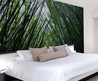 Wall Mural Decal Sticker Bamboo Rainforest 6ft Tall X 9ft Wide