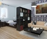 11+ Refresing Ideas About Studio Apartment Decoration