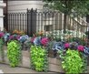 1000+ Images About Window Boxes And Containers On Pinterest