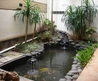 Inspiring Indoor Garden Design With Pond