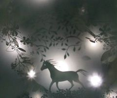 1000+ Ideas About Shadow Play On Pinterest