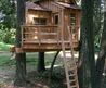 25+ Best Ideas About Treehouses For Kids On Pinterest