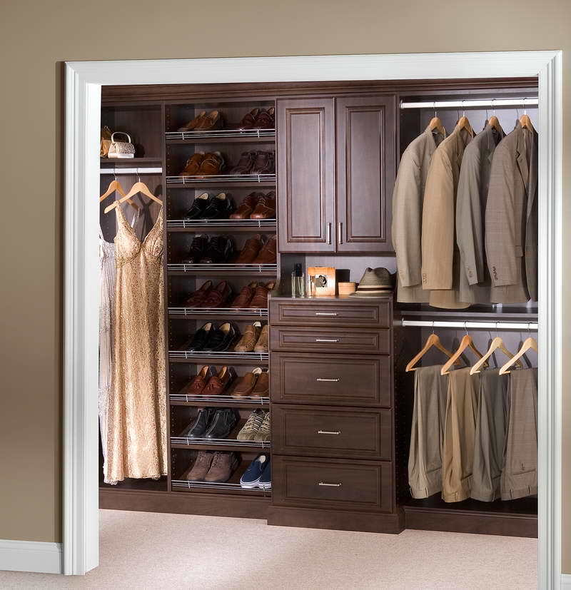 Cabinet Shoe Organizer, Ideas For Hanging Closet Shoe Storage — Cfields Interior