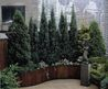 178 Best Awesome Rooftop Gardens Images On Pinterest